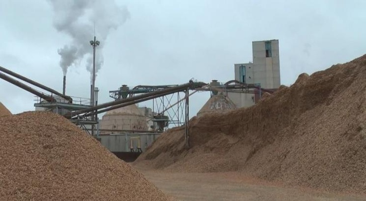 Old Town Fuel and Fiber, a former pulp mill, converts a portion of the wood chips used to make pulp to biofuels.