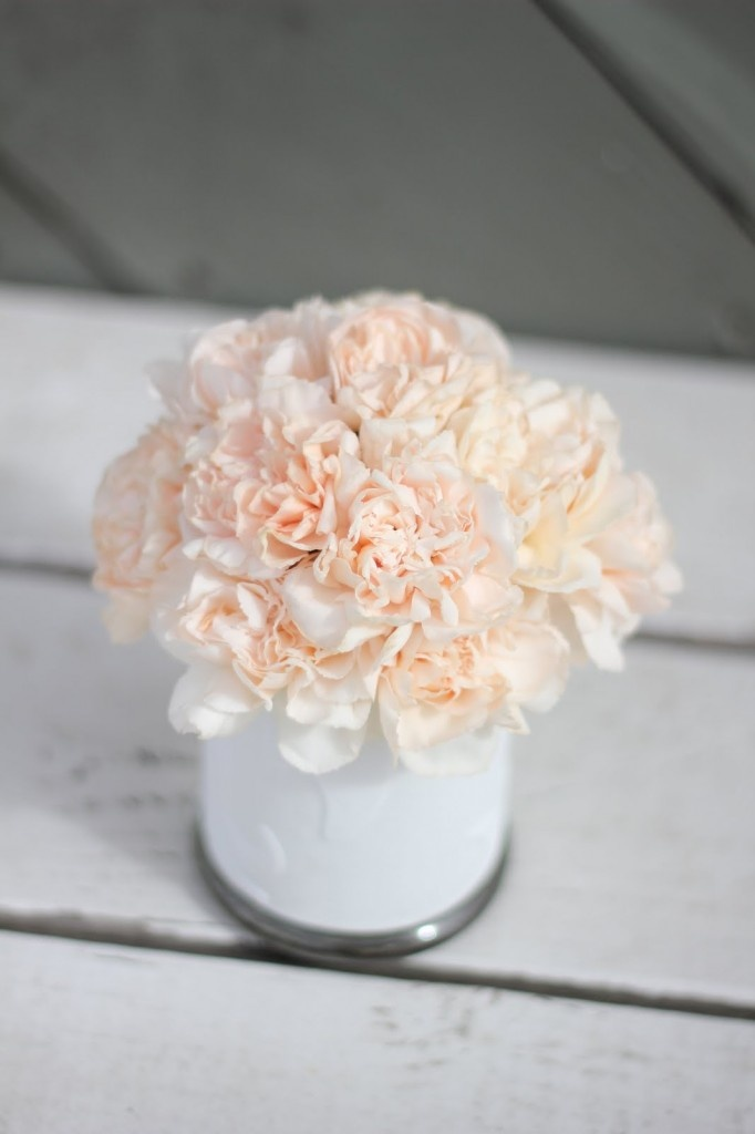 light peach carnations - total cost of this DIY project less than 8 bucks!