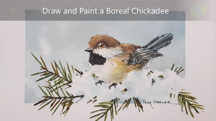 How to draw and paint a Chickadee. Dry brush watercolour and Ink techniq...