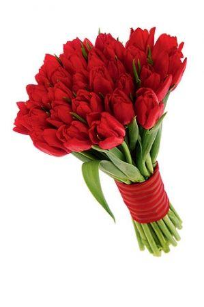 Robale un suspiro con un Ramo de tulipanes. http://www.donregalo.pe/RAMO-DE-TULIPANES