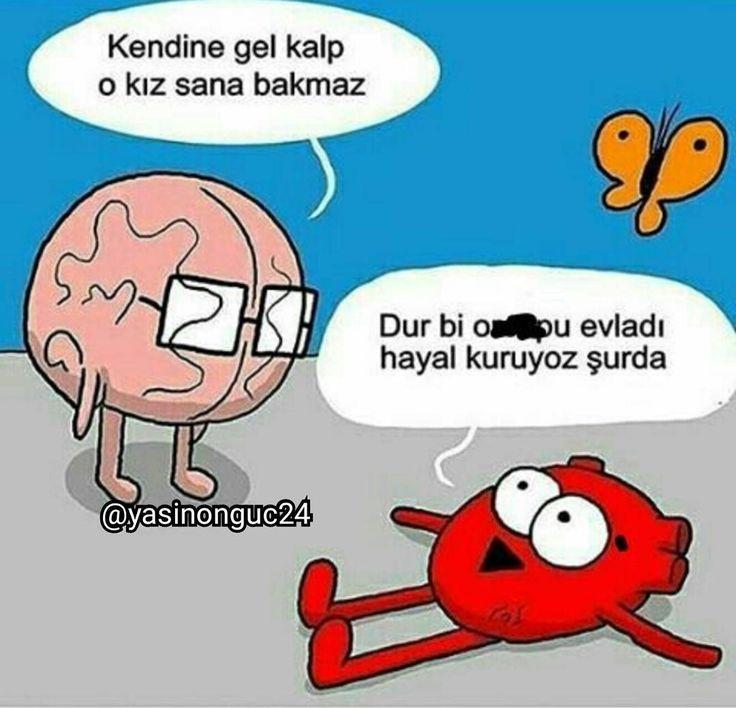 Beğen yoruma kankalarını etiketle�� @yasinonguc24  #yorum#gt#takip#fenomen#istanbul#bodrum#yaz#muratboz#güneş#demetakalin#takipçi#semihvarol#remixadam#aykutelmas#vine#video#şaka#espiri#gülmek#remix#galatasaray#vine#komedi#fenerbahçe#caps#inci#türkiye#vine#tbt#mizah#baranalp#tbt#saykodelibirisi #komedi http://turkrazzi.com/ipost/1521726962233933856/?code=BUeQpwVFoAg
