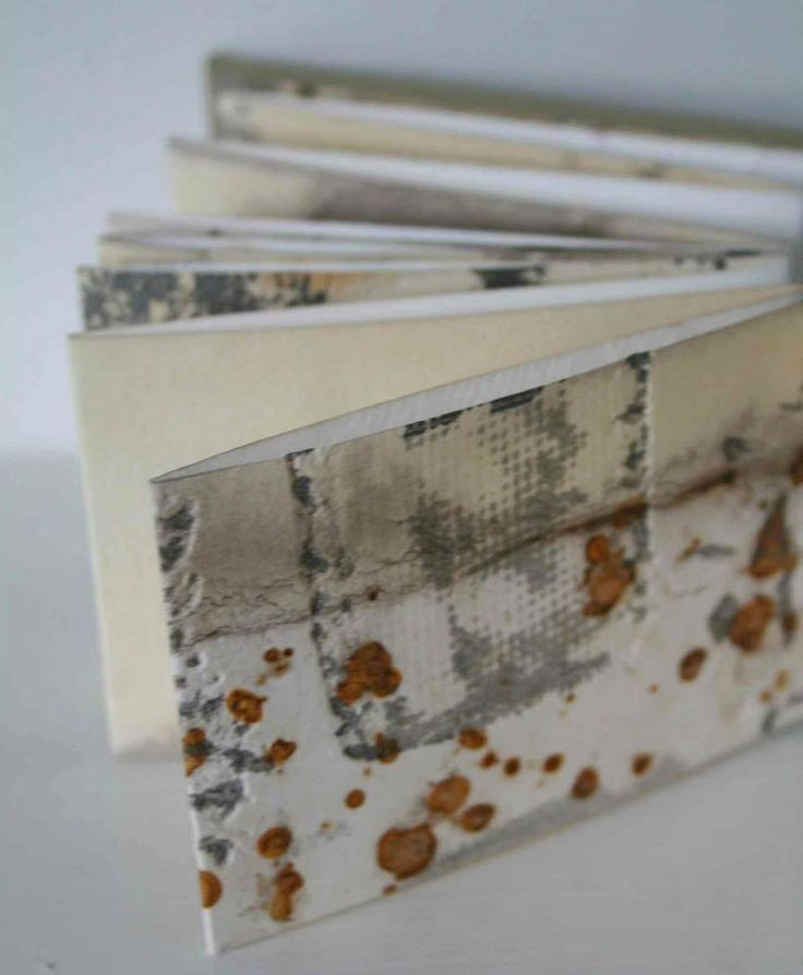 Tide Marks book #39 by Alice Fox - mixed media artists book: Rust print and collagraph print on paper with hand stitch in cotton  http://www.alicefox.co.uk/