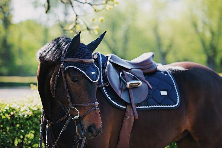 Blog - Equestrian Stockholm