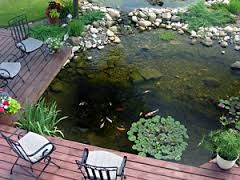 437 best small garden ponds images on pinterest small for Small pond care