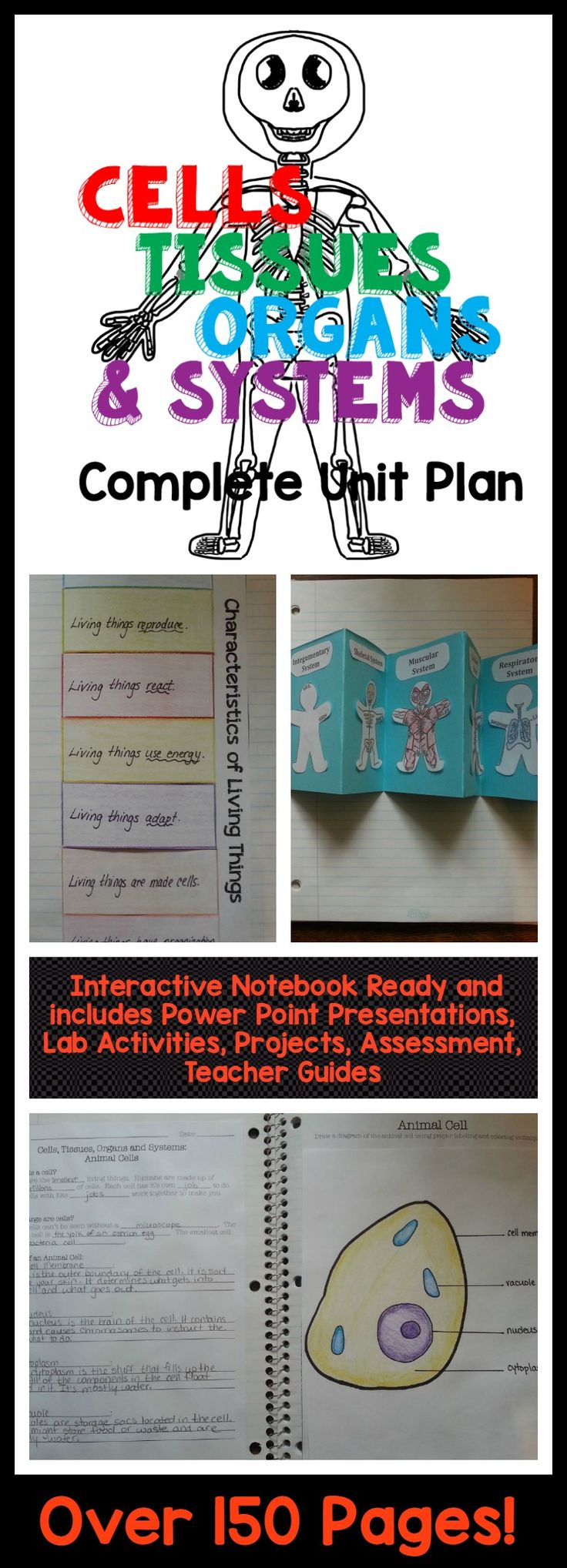Amazing unit! This unit has it all! Power points, teacher guide, interactive notebook templates, student notes, assessments, labs, activities, projects and more!
