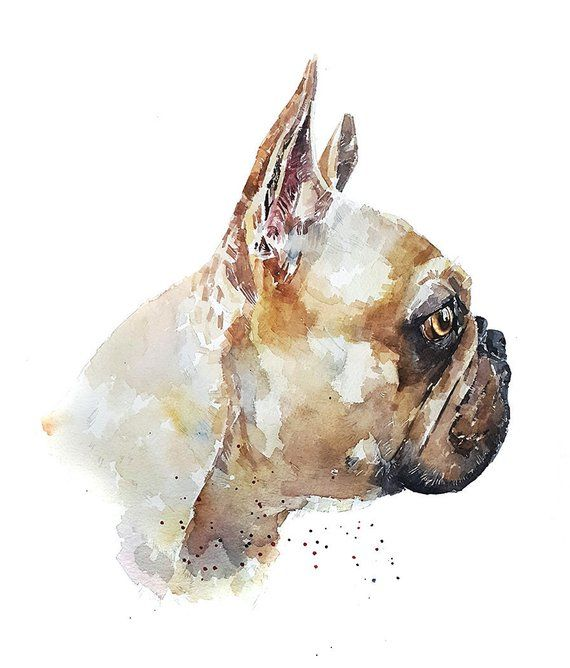 Eye On The Prize French Bulldog Print Watercolour Tiere Hund Hunde Tiere