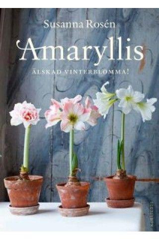 Amaryllis - Älskad vinterblomma