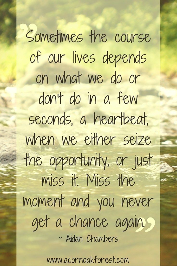 Seize The Day Quotes 51 Best Seize The Moment Quotes Images On Pinterest  Moment Quotes