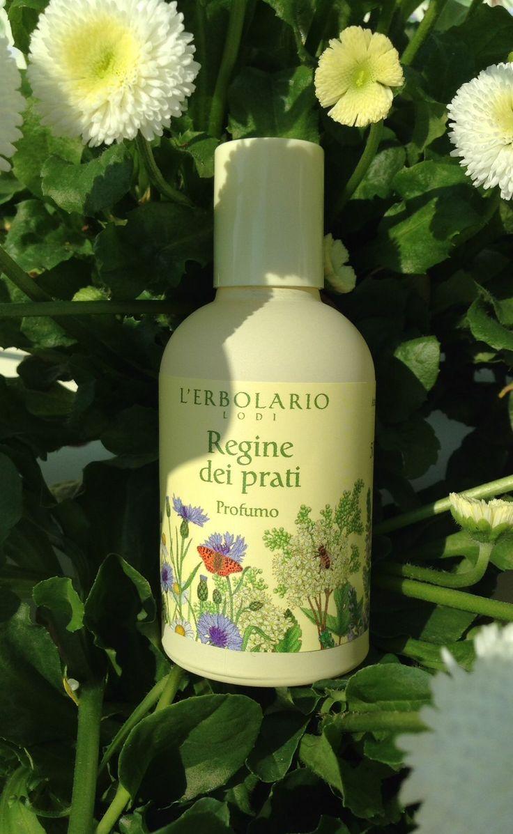 Note di Verde di Foglia, Bois de Rose, Camomilla, Regina dei Prati, Legno di Cedro