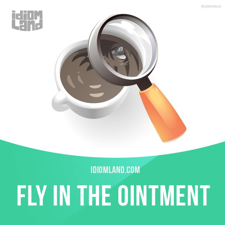 """English idiom used for someone or something that spoils a good situation. Example: """"The only fly in the ointment during our whole vacation was when our flight was delayed."""" One of a series of """"Idiom Cards"""" created by IdiomLand.com"""
