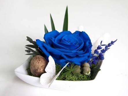 Resultado de imagen para rosas preservadas