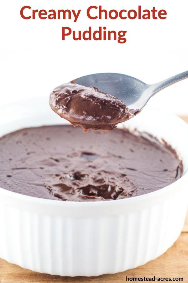 Easy Chocolate Pudding Recipe Recipe Chocolate Pudding Recipes Homemade Chocolate Pudding Dessert Recipes Easy