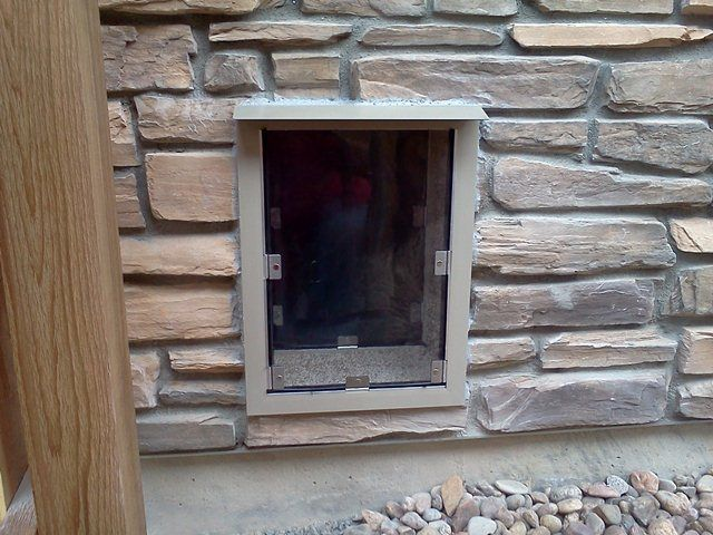 22 Best Images About Dog Doors For Walls On Pinterest