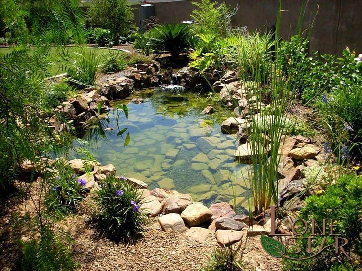 49 best slope drainage images on pinterest landscaping for Natural ponds and gardens