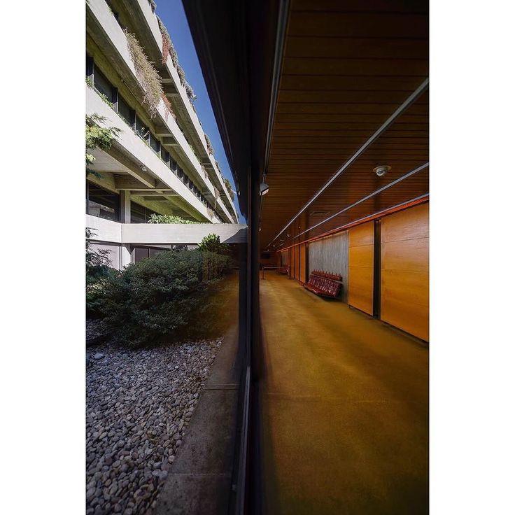 Gulbenkian Ricardo Oliveira Alves  #architecture #architects #architecturephotography #archdaily #architecturelovers #photoftheday #portugal #instagram #lisboa #instadaily #nikonphotographer #p3top #portugal #madeinportugal #lisboa #minimalism #portuguesearchitecture #portuguesephotographer #ricardoliveiralvesphotography #igers #ricardooliveiraalves #gulbenkian