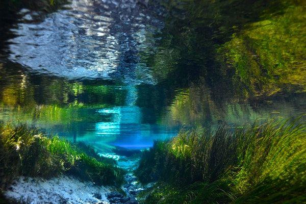 Jennifer Adler - Conservation photographer focused on water. National Geographic Explorer, cave diver, and ecologist.