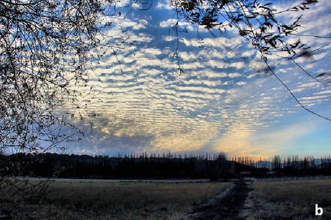 http://www.rollingems.com/index.php/meteorologia/199-classificazione-delle-nubi-parte-2 Classificazione delle nubi (parte 2) - b) Cirri derivanti da una nube temporalesca in fase senescente. Per la loro forma sfilacciata prendono il nome di cirrus spissatus ma sono più comunemente noti come cirri falsi per distinguerli da quelli di bel tempo o comunque dai tutti i normali cirri non connessi ad una cella temporalesca.
