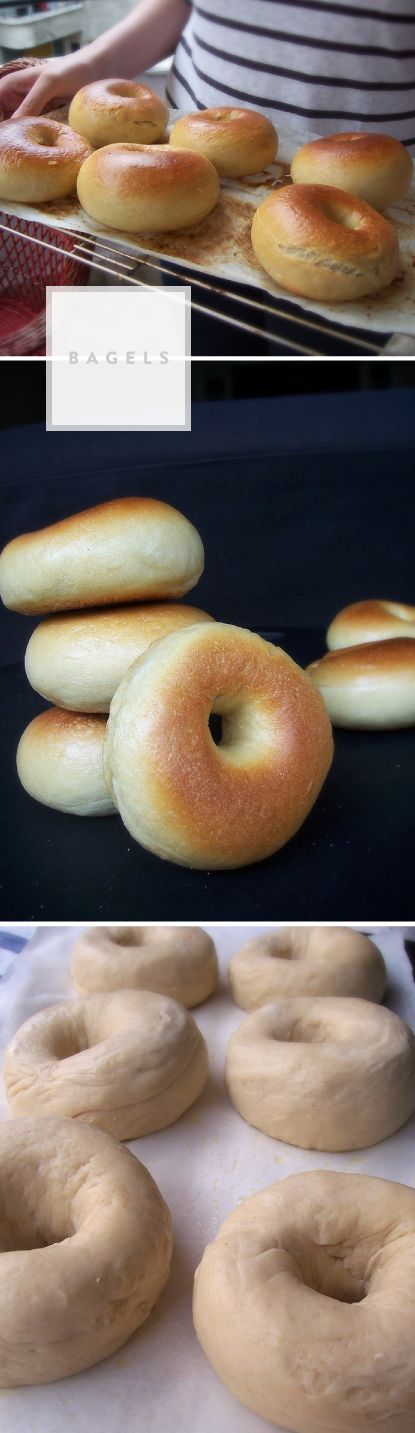 Really amazing bagels