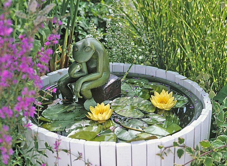 Les 133 Meilleures Images Propos De Mini Bassin Et Plantes D 39 Eau Sur Pinterest Jardins