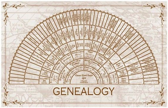 Family Tree - 7 Generation Personalized Custom Half Wheel Genealogy Chart