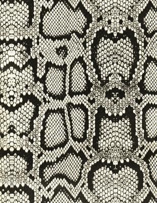 Black and White Snakeskin