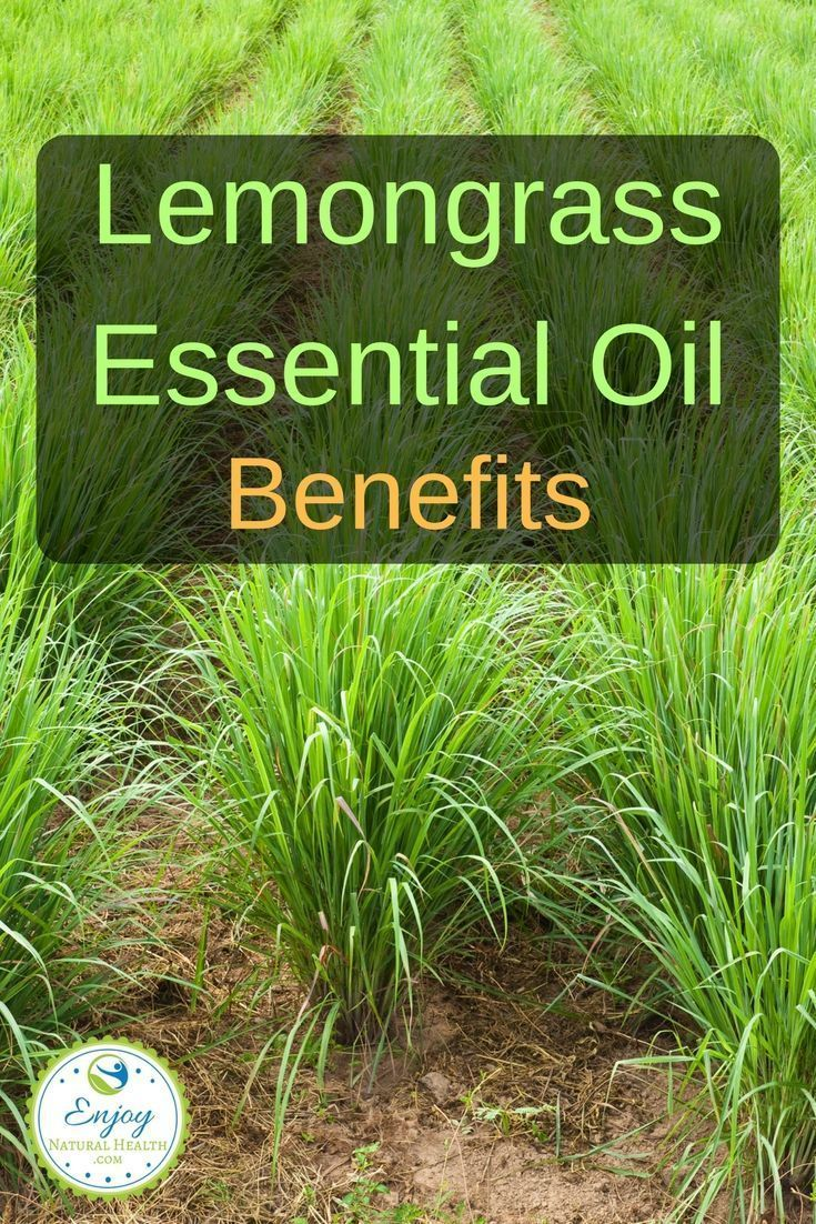 Here are just  a few of the many  benefits of lemongrass oil you should know about.