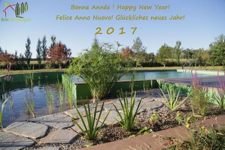 En 2017, quoi de mieux qu'un peu de «Farniente» au bord de la piscine naturelle à Brin de Cocagne ? Chambre d'hôtes écologique de charme dans le Tarn près d'Albi - Brin de Cocagne