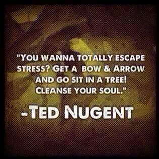 I couldn't agree more!  Nothing is more relaxing and good for my soul than sitting in the woods being part of nature.
