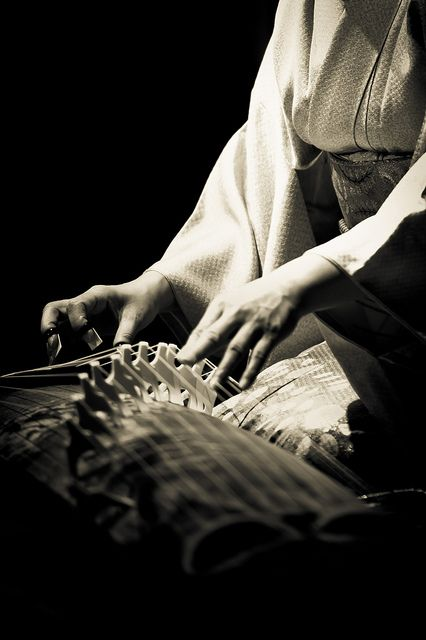 The koto (箏) | a traditional Japanese stringed musical instrument, similar to the Chinese zheng, the Mongolian yatga, the Korean gayageum and the Vietnamese đàn tranh. The koto is the national instrument of Japan. Photo by Stéphane Barbery