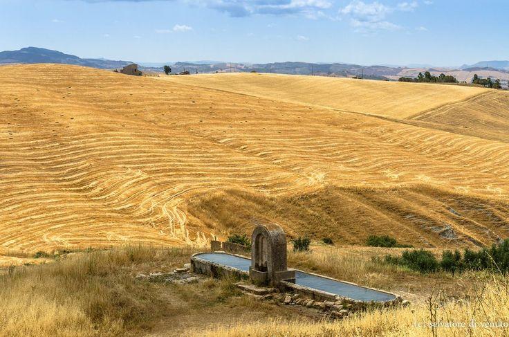 In #estate l'entroterra siciliano ha il colore dell'oro.  In summertime, the hinterland becomes  golden#CastellanaSicula ph Salvatore Di Venuto #visitsicilyinfo #outbacksicily #summerinsicily