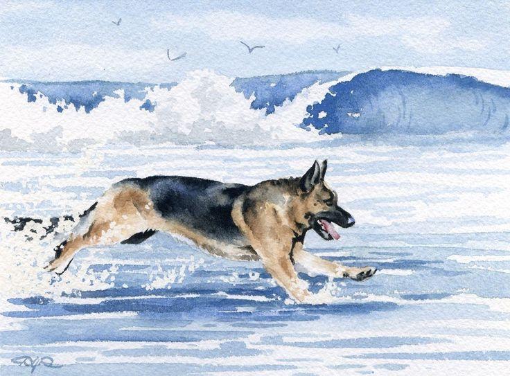 GERMAN SHEPHERD At The Beach Dog Signed Art Print by k9artgallery