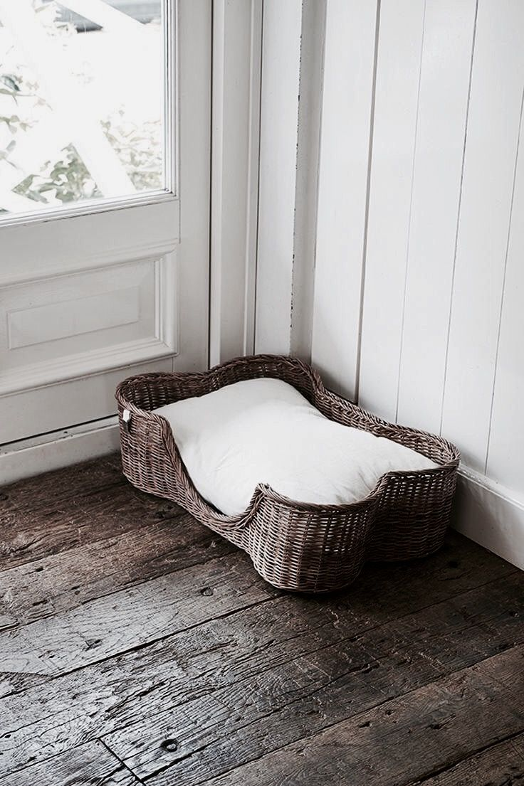Pin by Sophἰe on At grandma's Cute dog beds, Dog bed