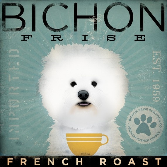 BICHON FRISE french roast Coffee Company original graphic art on canvas 12 x 12 x 1.5 by stephen fowler  $79