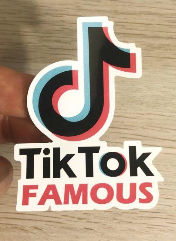 Tik Tok Stickers Girls Birthday Party Themes Girl Birthday Party Favors Boy Party Favors