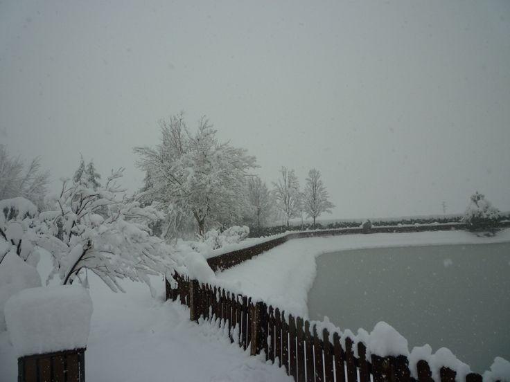 Il nostro parco nel Gennaio 2012...quasi un metro di neve!!!