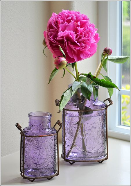 25 best ideas about purple vase on pinterest purple for Flowers in glass bottles