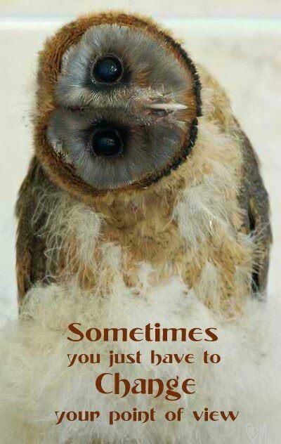 Sometimes you just have to CHANGE your point of view!  www.AccessConsciousness.com