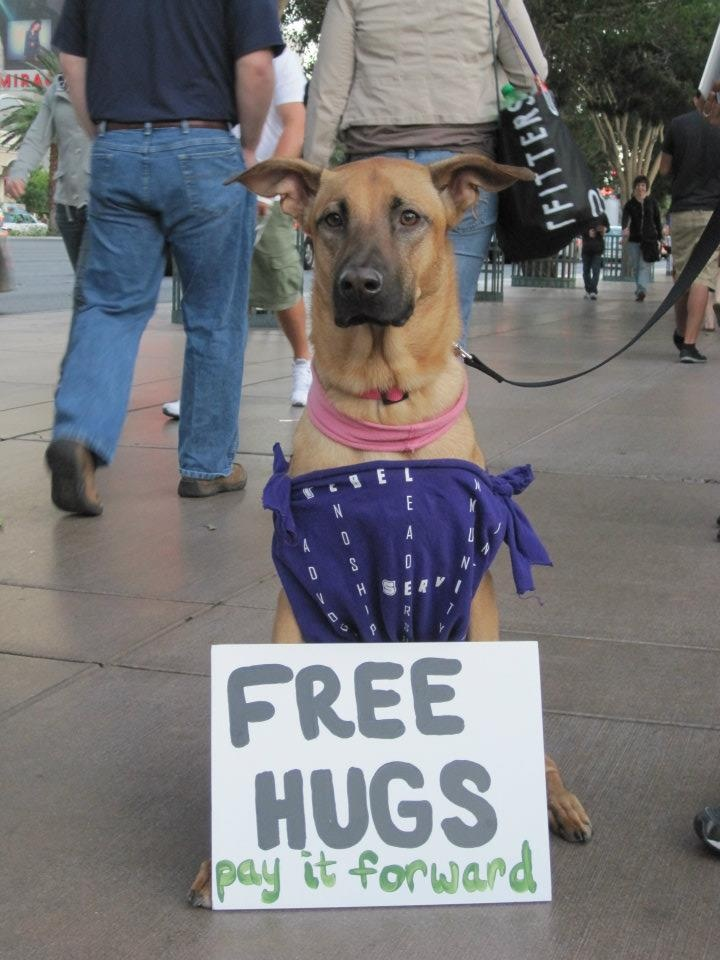 free hugs campaign The free hugs campaign is an international social movement built around the individual or group practice of offering hugs to strangers in public places with no strings attached.