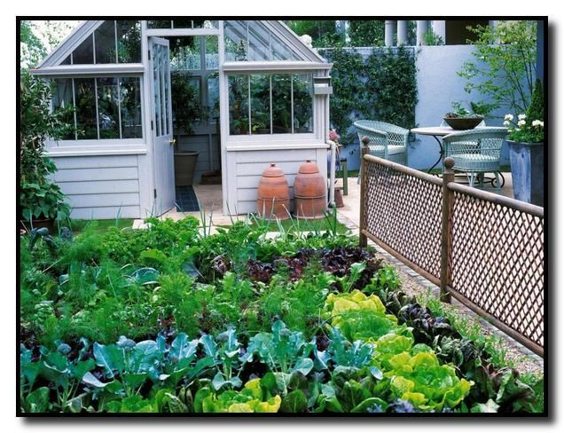 Backyard Vegetable Gardens Kitchen Garden Small Vegetable Gardens Edible Garden Backyard Garden V In 2020 Backyard Garden Garden Design Backyard Vegetable Gardens