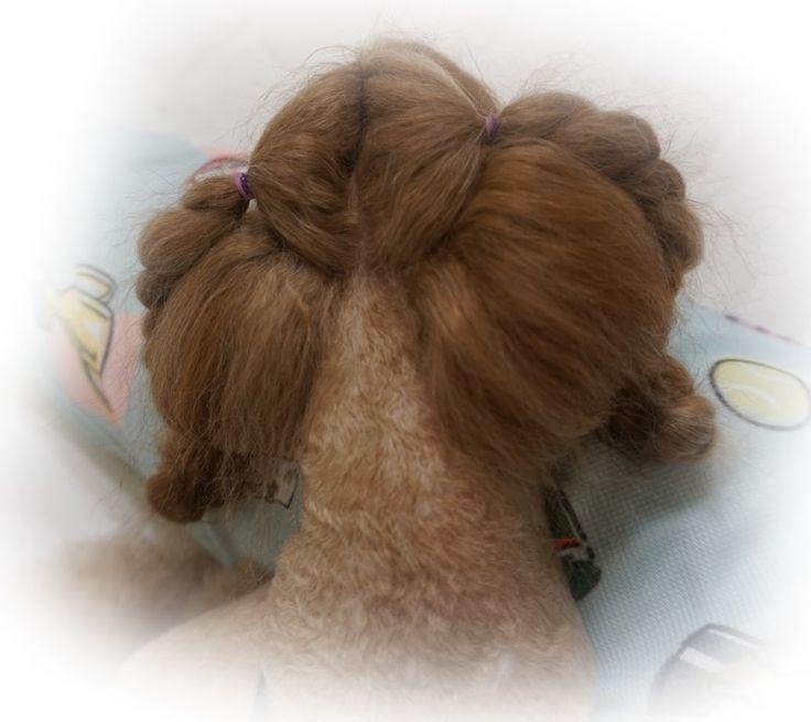 푸들 미용 조이피아에서 땋은 머리 푸들 스타일 : 네이버 블로그