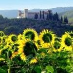 Vacanze in umbria - Agriturismi e spunti di viaggio