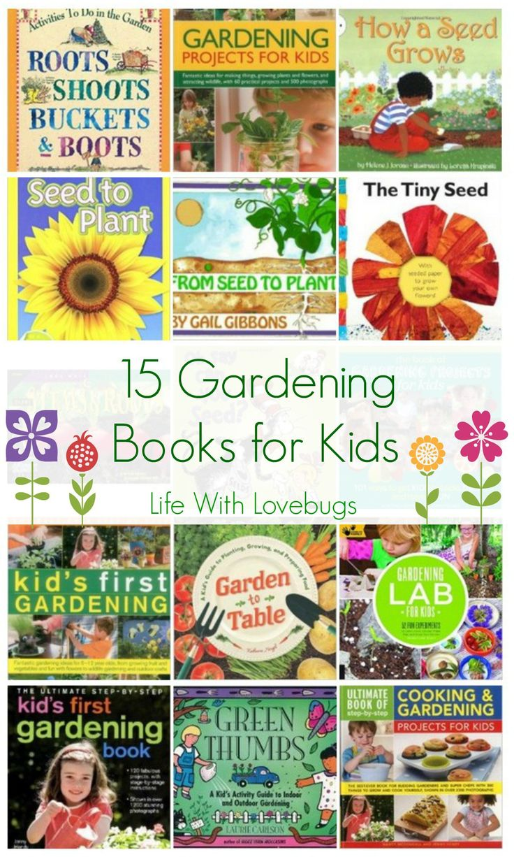 Find This Pin And More On Backyard Gardening. Part 91