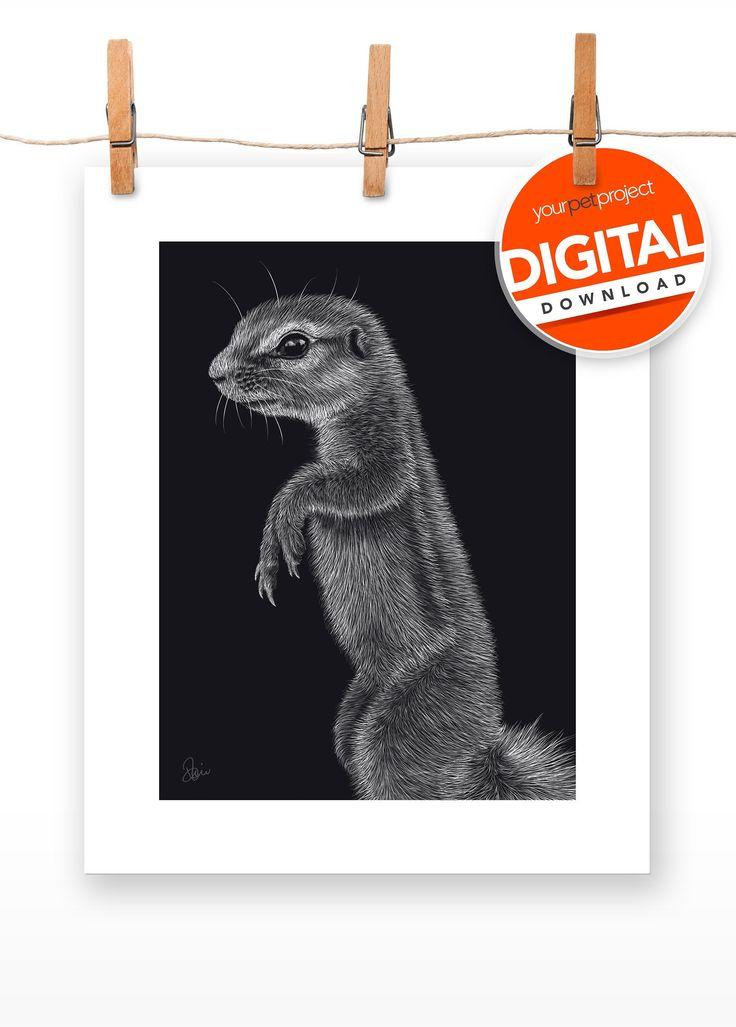 Digital Download | XERUS 'Squirrel' PRINT | PRINTABLE Wall Art | Animal … – PETS & ANIMALS