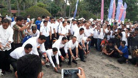 Dukung Konservasi, Garuda Lepaskan Tukik Penyu Di Pantai Senggigi - http://darwinchai.com/traveling/dukung-konservasi-garuda-lepaskan-tukik-penyu-di-pantai-senggigi/