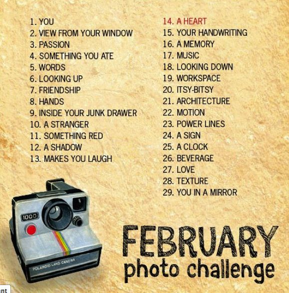 February photo challenge- need to get motivated to do something creative, and for myself, not a client ;)