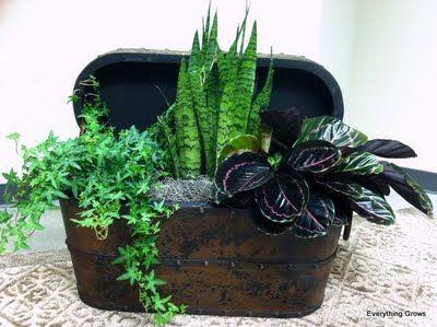 114 best Plant arrangements images on Pinterest   Gardening ...
