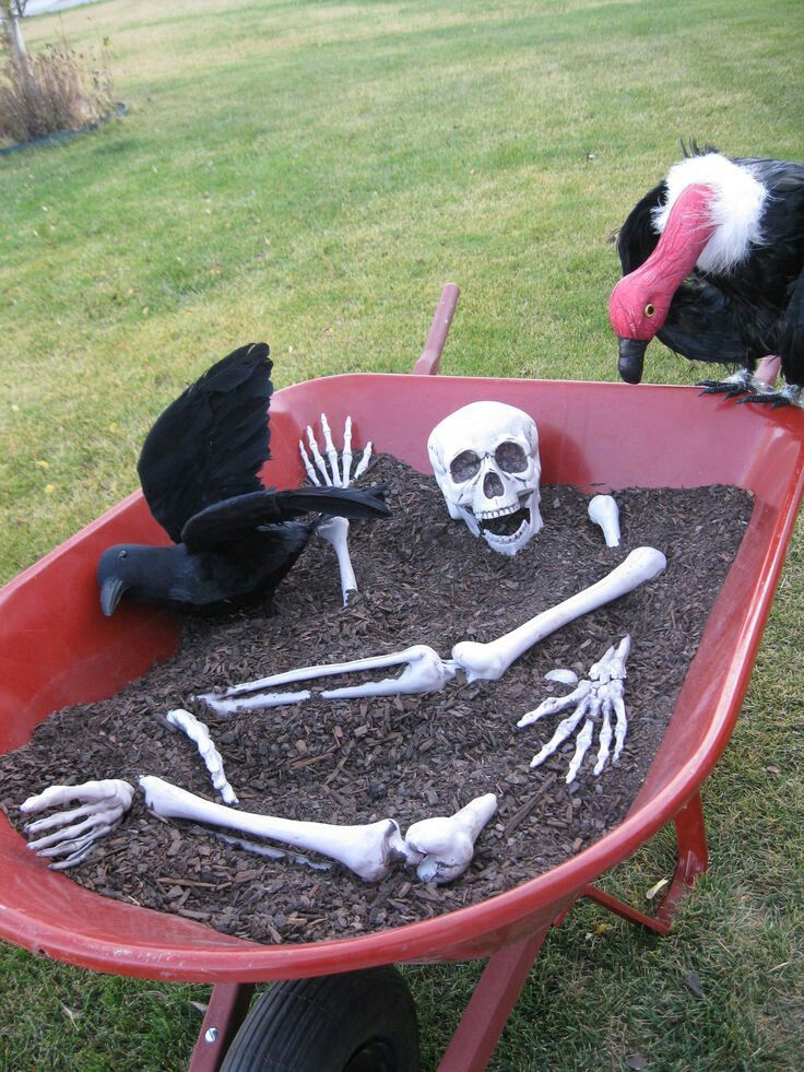 A wheelbarrow, some dirt, a few old skeleton bones, and a few carnivorous birds is all that it takes to create this humorous display for your DIY Halloween decorations. Not everyone has an extra vulture sitting around their house, so you may have to purchase one from a local Halloween store, along with a full skeleton and feathered black crow. The dirt or mulch can be found at many home improvement stores and may be readily available from your own yard.