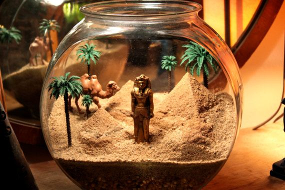 Wonders of Egypt - Pyramid Terrarium / Diorama
