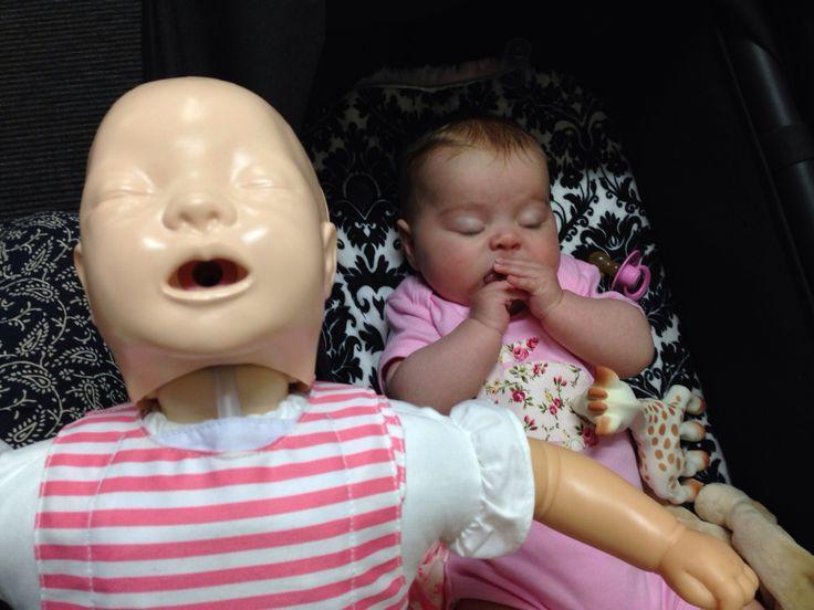 Millie does her best CPR manikin impersonation