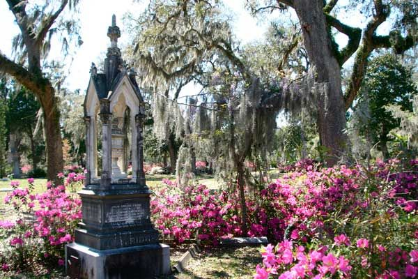 Savannah GA, US. The largest city and the country seat of Chatham County in the U.S. state of Georgia, genteel Savannah bursts with charm and elegance. Founded in 1733, Savannah has lured millions of visitors.